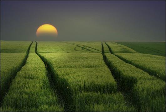 amazing-nature-photography-29